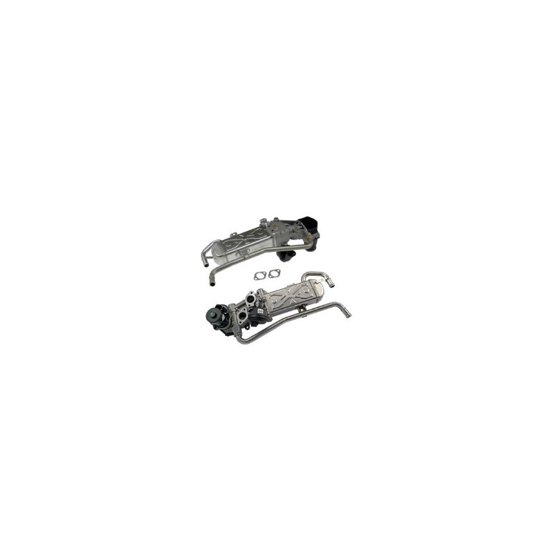 Vanne EGR POLO 1.6 TDI 75 90 105 VW 6R 6C rg 8 2009 2010 2011 2012 2013 2014 remplacement nettoyer